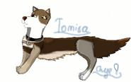 Tomisa