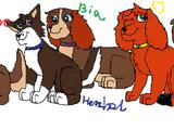 CJ, Sora, Hershel, Snow i Bia