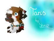 TarisbyShiraz