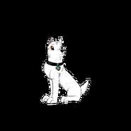 Rex new pup