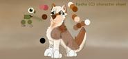 Kasha character sheet