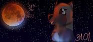 Eyra watching Super Blue Blood Moon
