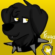 Frugo by Toy