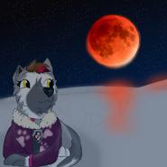 Strawberry watching super blood moon