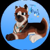 Taris by Chye