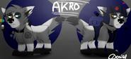 Akro Character scheet