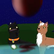 Conrad and Shiraz watching Moon-Eclipse