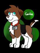 Corrlie