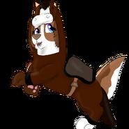 Juliet as a horse