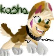 KashaByShiraz