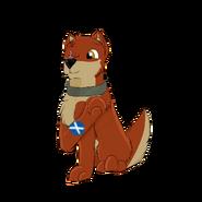 Kieł with flag of Scotlnad on his paw Scotland trip special 2019