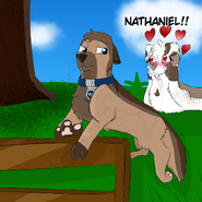Harper watching Nathaniel during his daily training