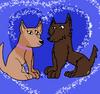 Majla and Marlet