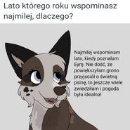 ZapytajRay-5