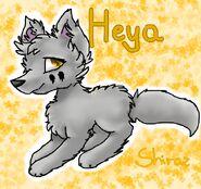 HeyaByShiraz