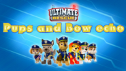 Ultimate Rescue Pups and Bow echo title card