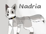 Nadria