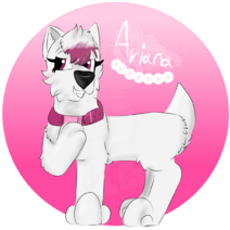 Ariana by Chye