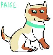 Paige-0