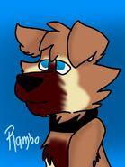 Rambo V2