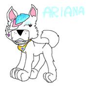 ARIXINA