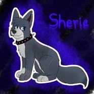 SheriebyWafel