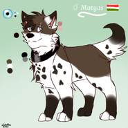 Matyas character sheet