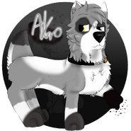 Akro by Chye