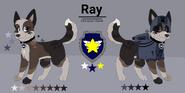 Refka Ray