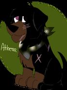 Athena for Chye
