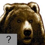 Mr.-Bear