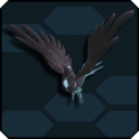 Crow Phamut