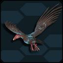 Vulture Phamut