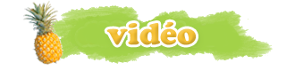 Ban Vidéo