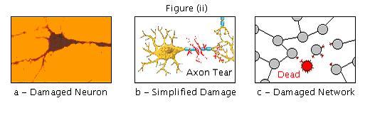 Brain repair figure ii