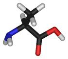 L-alanine-3D-sticks