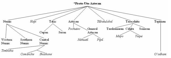 Uto-Aztecan Family Tree