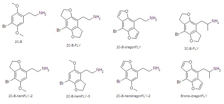 2C-B-FLY SAR