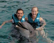 OceanWorld DolphinPhoto