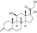 Glucocorticoids
