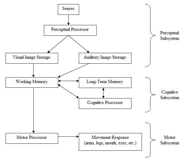 HumanProcessorModel