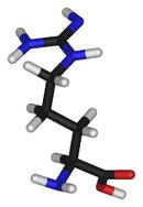 L-arginine-3D-sticks-(tall)