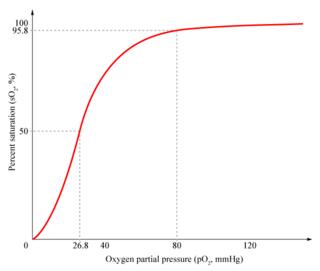 Hb saturation curve