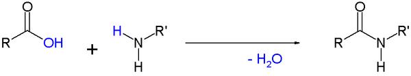 SimpleAmideFormationByCondensation