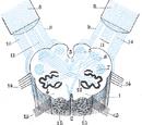 Internal arcuate fibers