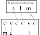 Nonconcatenative morphology