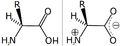 Amino acid zwitterion.png