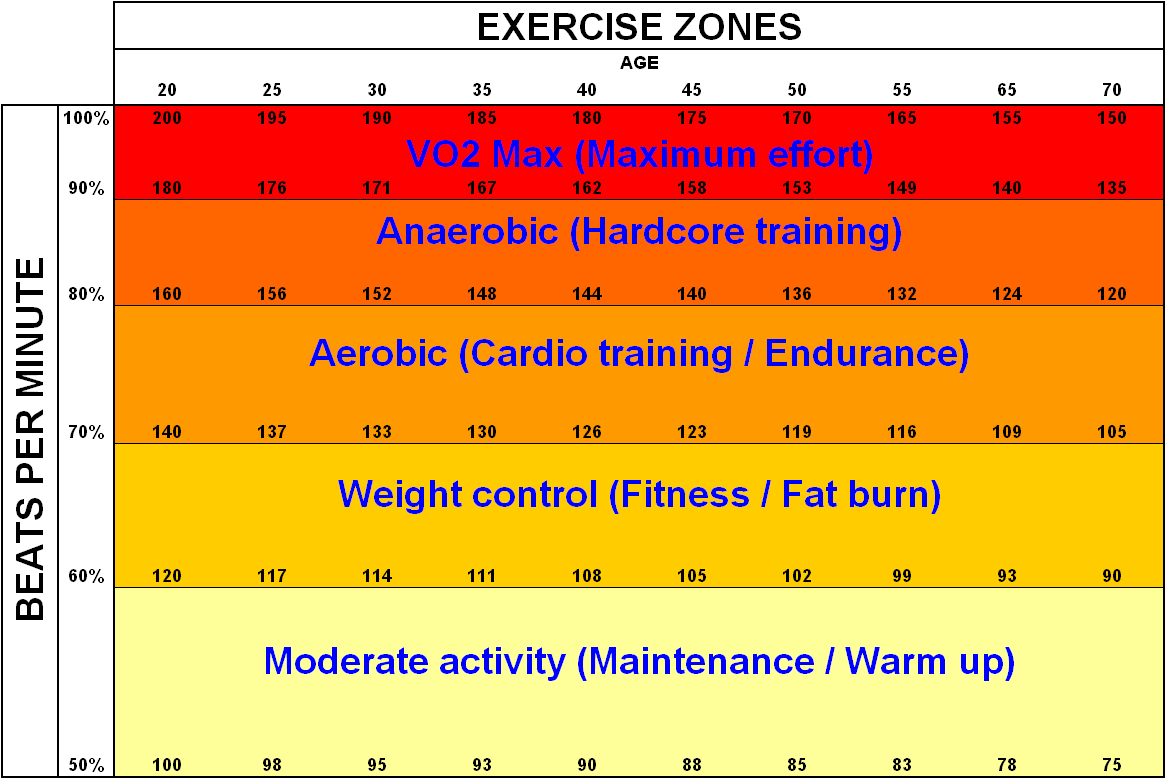 Aerobic Exercise Psychology Wiki Fandom Powered By Wikia
