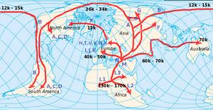 Human mtDNA migration