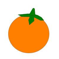 Persimon Fruit